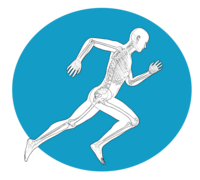 Southeast Physical Therapy